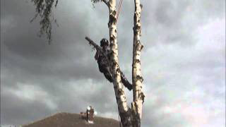 Tree Pruning Mexborough